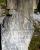 headstone - elizabeth garrison.jpg